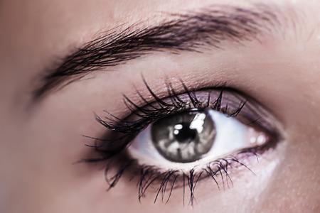 portrait young girl studio: Close up of Grey female eye macro. Make-up Stock Photo