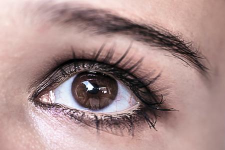 brown eye: Brown Eye Makeup. Beautiful Eyes Make-up. Macro