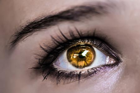 beaux yeux: Jaune Maquillage des yeux. Beautiful Eyes Make-up. Macro