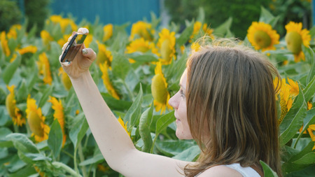 Beautiful woman in the field with sunflowers takes a selfie phone