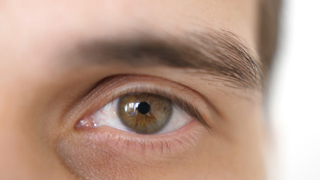 Close up of a male eye. Detail of a brown eye of a handsome man looking at camera