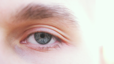 Close up of a gray male eye. Detail of a grey eye of a man looking at camera.