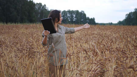 Farmer woman working with tablet on wheat field. agronomist with tablet talking on video communication reporting data of crop growth while researching plant genetics. agricultural business.