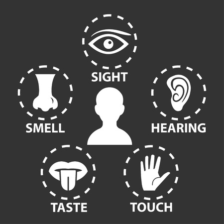 five elements: Five senses icon set Illustration