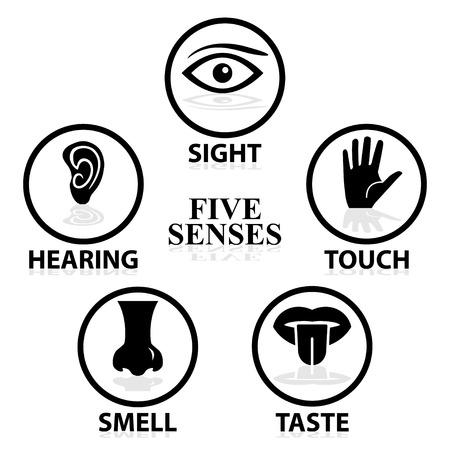 audition: Pięć zmysłów związane zestaw ikon wektorowych Ilustracja