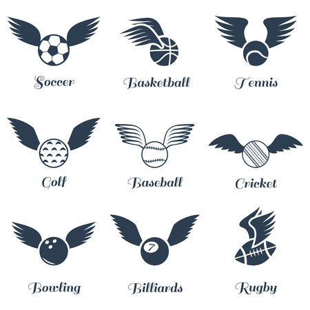 dodge: Sport balls with wings icon set