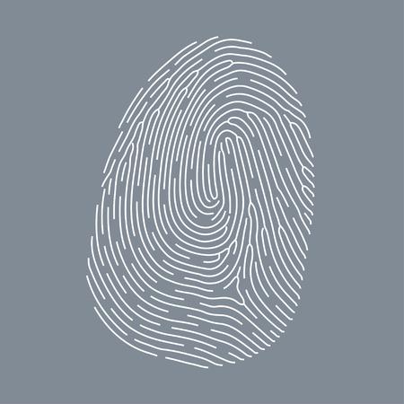 odcisk kciuka: Wektor linii papilarnych