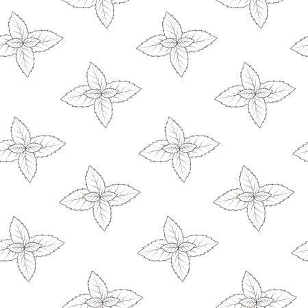 mint leaves: Mint seamless pattern.
