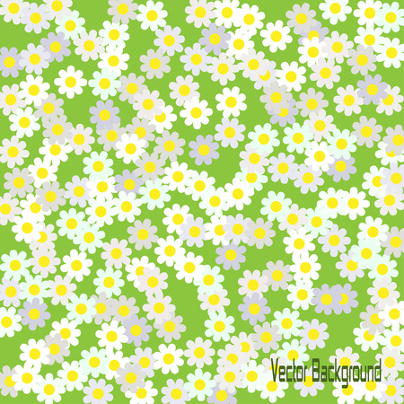 camomiles: Background with camomiles,vector illustration