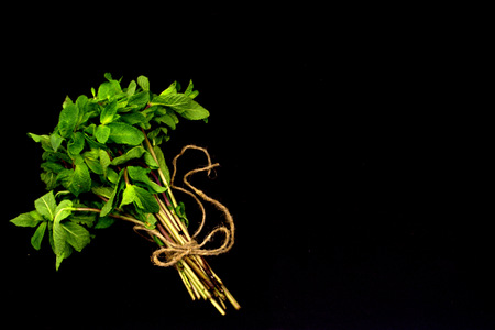 Bouquet of mint on a black background. Copy space