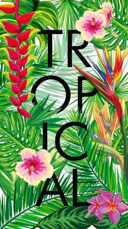 topical: Tropical composition - text, flowers, palm leaves, strips. Beautiful  vector floral jungle background, exotic print. Vector illustration. Illustration