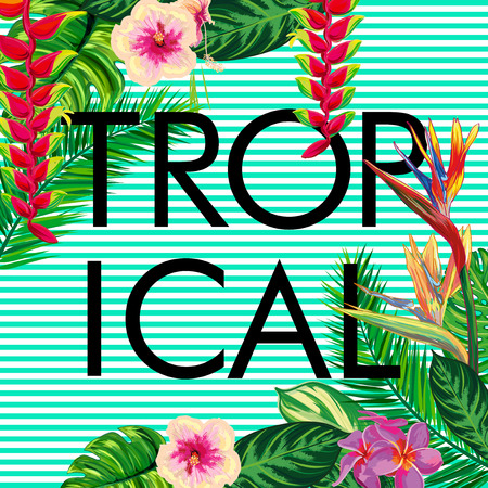 Tropical composition - text, flowers, palm leaves, strips. Beautiful vector floral jungle background, exotic print. Illustration