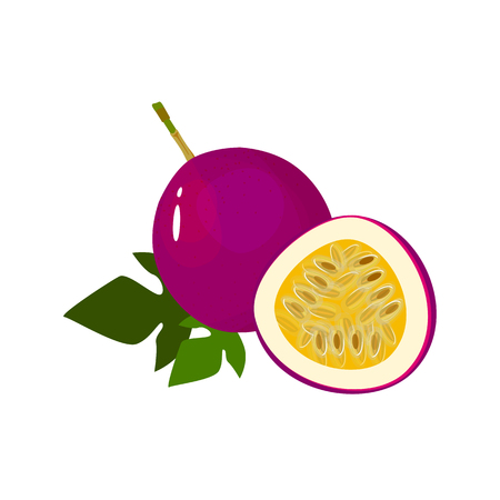 passionfruit isolated on white background. Bright vector illustration of colorful half and whole of juicy passionfruit. Fresh cartoon