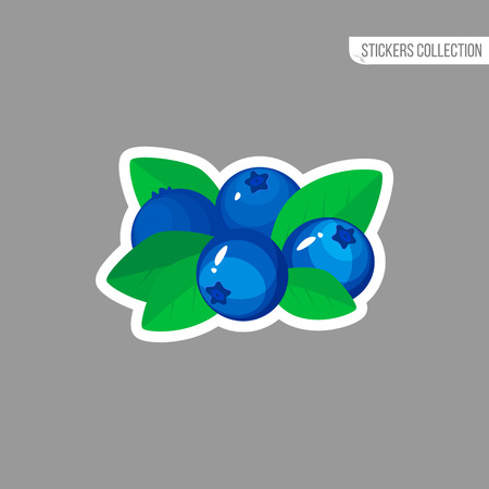 blueberry sticker isolated on white background. Bright vector illustration of colorful half and whole of juicy bilberry. Fresh cartoon