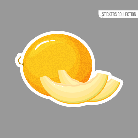 melon sticker isolated on white background. Bright vector illustration of colorful half and whole of juicy melon. Fresh cartoon
