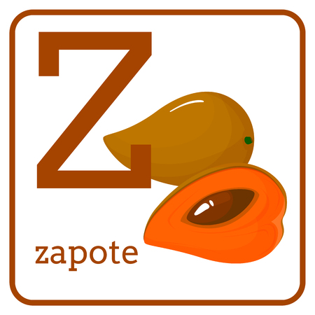 An alphabet with cute fruits, letters A to Z. Cartoon vector alphabet isolated on a white background. Letter Z zapote