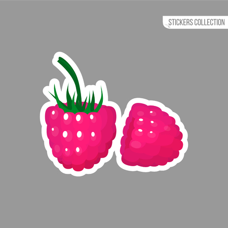 Raspberries sticker isolated on white background. Bright vector illustration of colorful two juicy raspberries. Fresh cartoon.