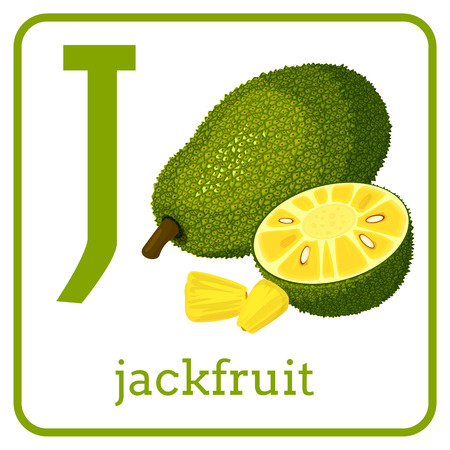 An alphabet with cute fruits, letters A to Z. Cartoon vector alphabet isolated on a white background. Letter J jackfruit