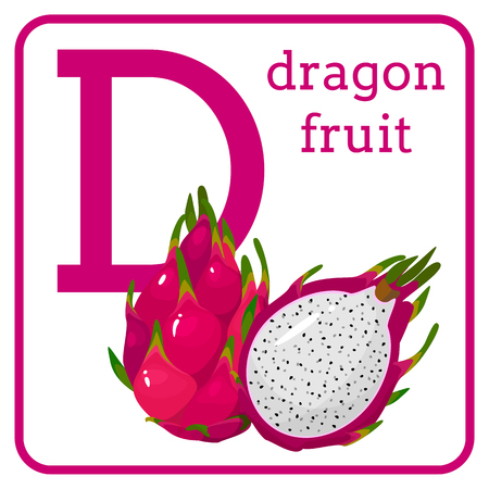 An alphabet with cute fruits, letters A to Z. Cartoon vector alphabet isolated on a white background. Letter D dragon fruit