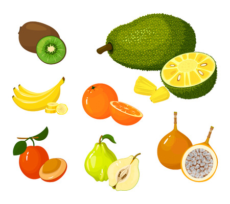 Tropical exotic Fruits set isolated on white background. Half and whole of juicy fruits. Cartoon flat icon collection. Kiwi and bananas, orange and quince, ximenia and voavanga, jackfruit