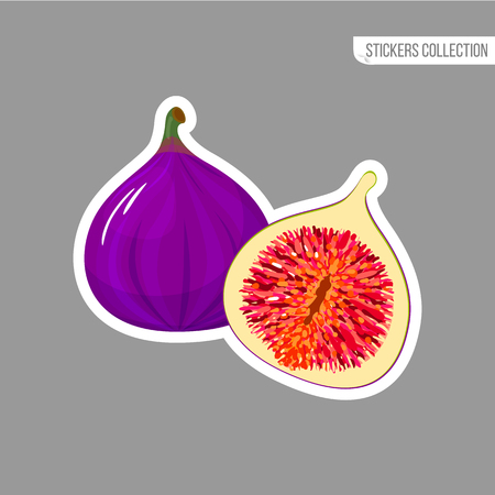 Fig sticker isolated on white background. Bright vector illustration of colorful half and whole of juicy fig. Fresh cartoon