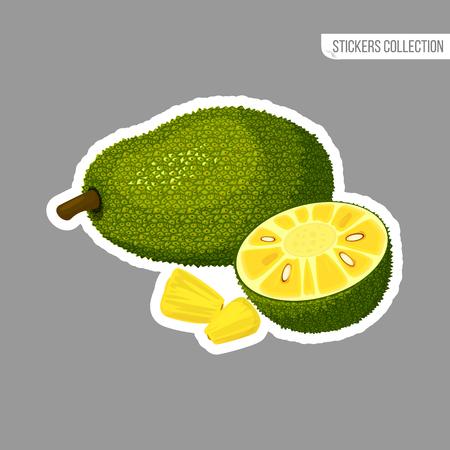 Jackfruit sticker isolated on white background. Bright vector illustration of colorful half and whole of juicy jackfruit. Fresh cartoon