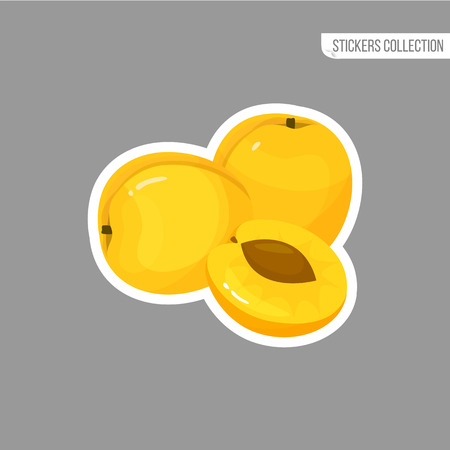 apricot sticker isolated on white background. Bright vector illustration of colorful half and whole of juicy apricot. Fresh cartoon Иллюстрация