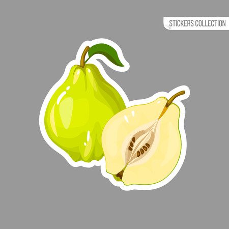 Quince sticker isolated on white background. Bright vector illustration of colorful half and whole of juicy quince. Fresh cartoon