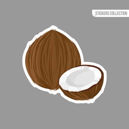 coconut sticker isolated on white background. Bright vector illustration of colorful half and whole of juicy coconut. Fresh cartoon