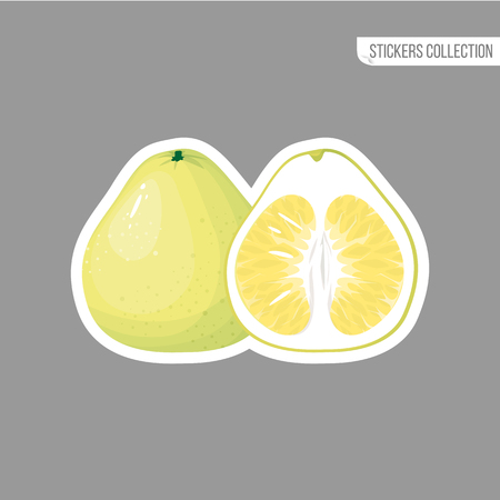 pomelo sticker isolated on white background. Bright vector illustration of colorful half and whole of juicy pomelo. Fresh cartoon Иллюстрация