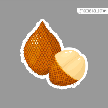 ita palm sticker isolated on white background. Bright vector illustration of colorful half and whole of juicy ita palm. Fresh cartoon Иллюстрация