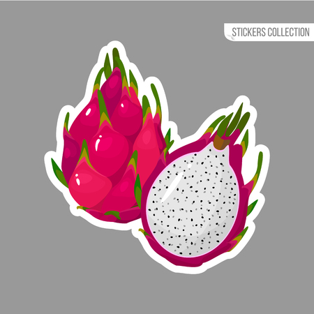 Red dragon sticker isolated on white background. Bright vector illustration of colorful half and whole of juicy Red dragon. Fresh cartoon
