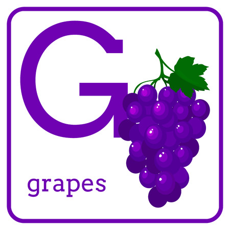 An alphabet with cute fruits, letters A to Z. Cartoon vector alphabet isolated on a white background. Letter G grapes Иллюстрация