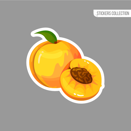 Peach sticker isolated on white background. Bright vector illustration of colorful half and whole of juicy peach. Fresh cartoon