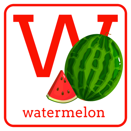 An alphabet with cute fruits, letters A to Z. Cartoon vector alphabet isolated on a white background. Letter W watermelon Иллюстрация