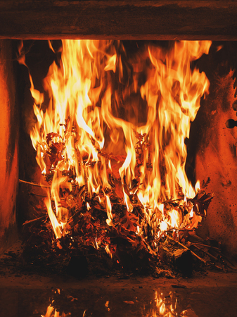 serbia xmas: Burning dried oak leaves in the fireplace. Orthodox Christianity custom during Christmas eve.