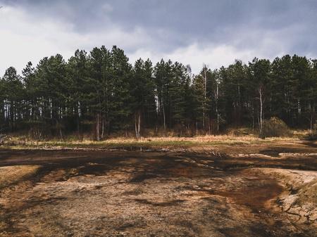 Moody nature landscape