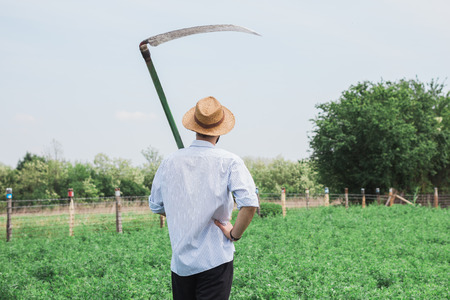 Worker with a reaper in the field