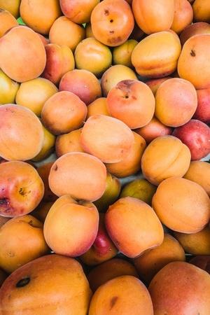 Close-up of apricots in a market Archivio Fotografico