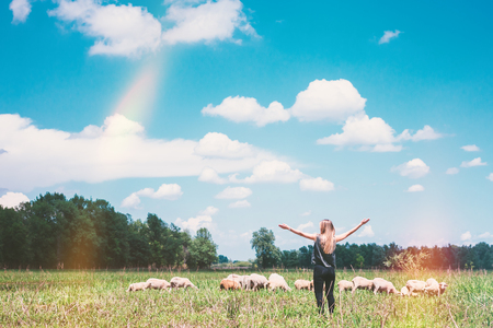 Young woman with sheeps in the meadow Archivio Fotografico