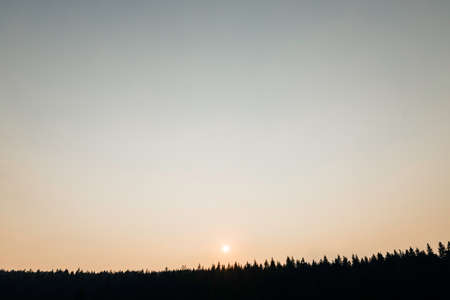 Beautiful sunset over the mountain pine forest