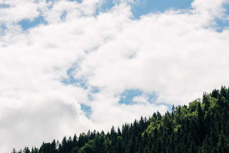 View of the mountain forest and a sky