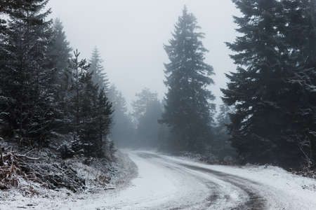 Snowy mountain road on a foggy early morning