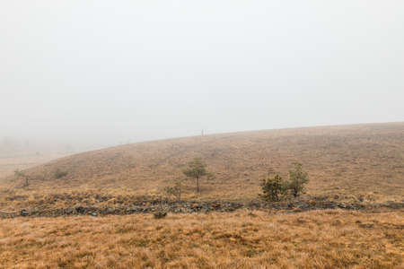 Young woman exploring nature on a foggy winter morning 版權商用圖片