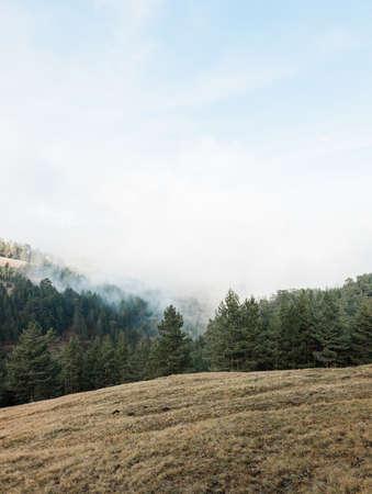 Foggy landscape in the mountains 版權商用圖片
