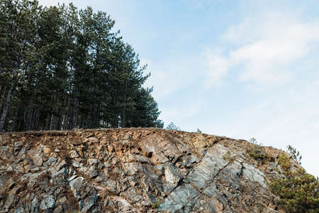 Rocky landscape of the forest in the mountains