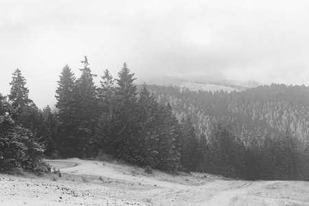 Black and white landscape in the mountains