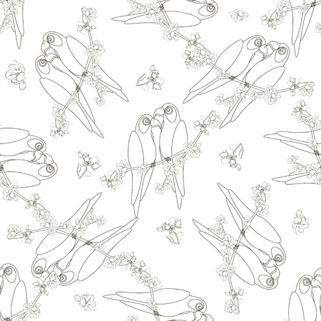 contoured: Seamless pattern with two contoured parrot bird sitting on the flower apple twigs. White-black vector illustration