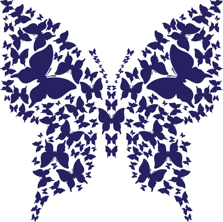 Abstract stencil symmetry outline butterfly from dark blue butterflies on white background.
