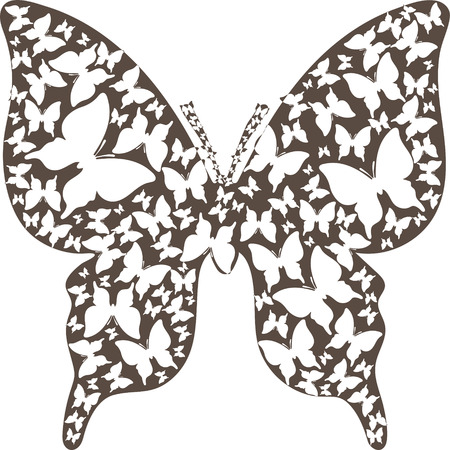 asymmetry: Abstract stencil asymmetry brown outline butterfly from white butterflies.